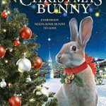 Happy Holidays!  Did You Know There is a Christmas Bunny?